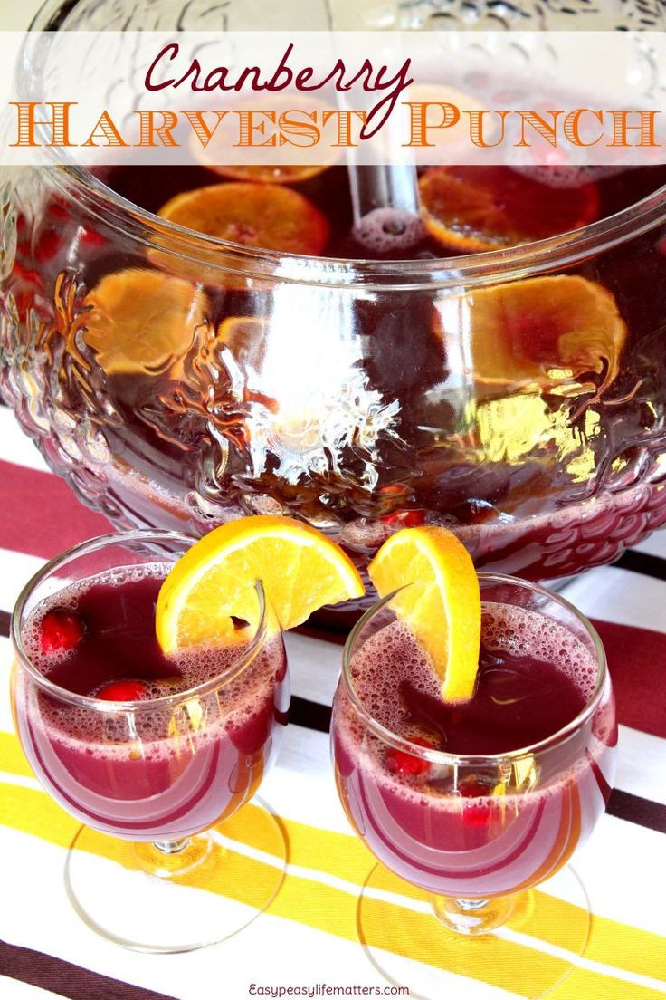Non Alcoholic Thanksgiving Drinks  1000 ideas about Non Alcoholic Punch on Pinterest
