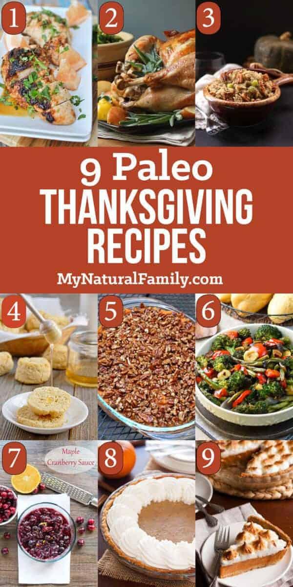 Paleo Thanksgiving Dinner  9 of the Best Paleo Thanksgiving Recipes for Your plete