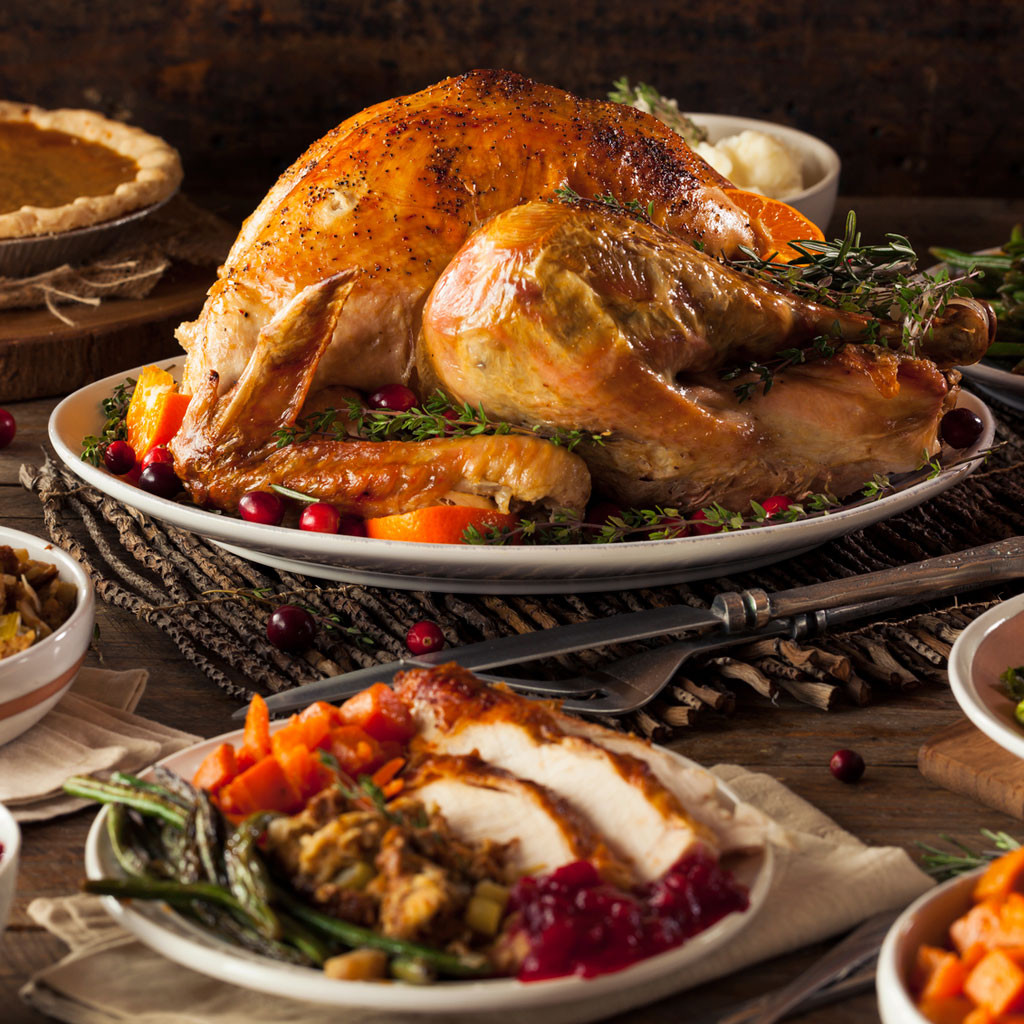 Picture Of Thanksgiving Turkey  Food Safety Tips for your Holiday Turkey Features