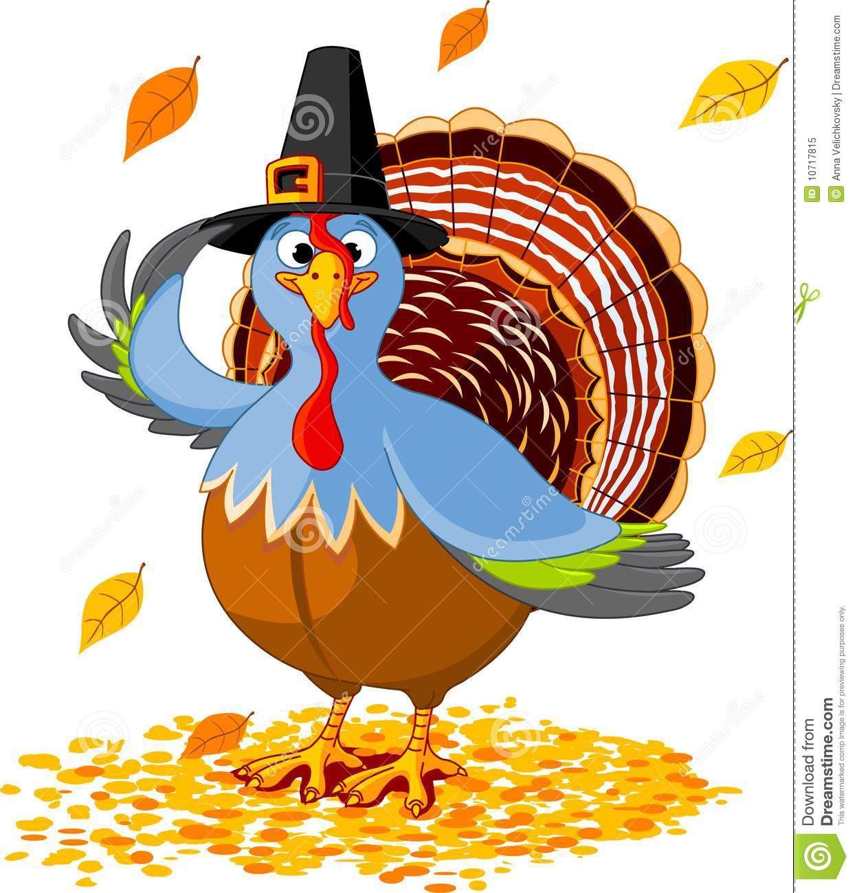 Picture Of Thanksgiving Turkey  Thanksgiving Turkey stock vector Illustration of nature