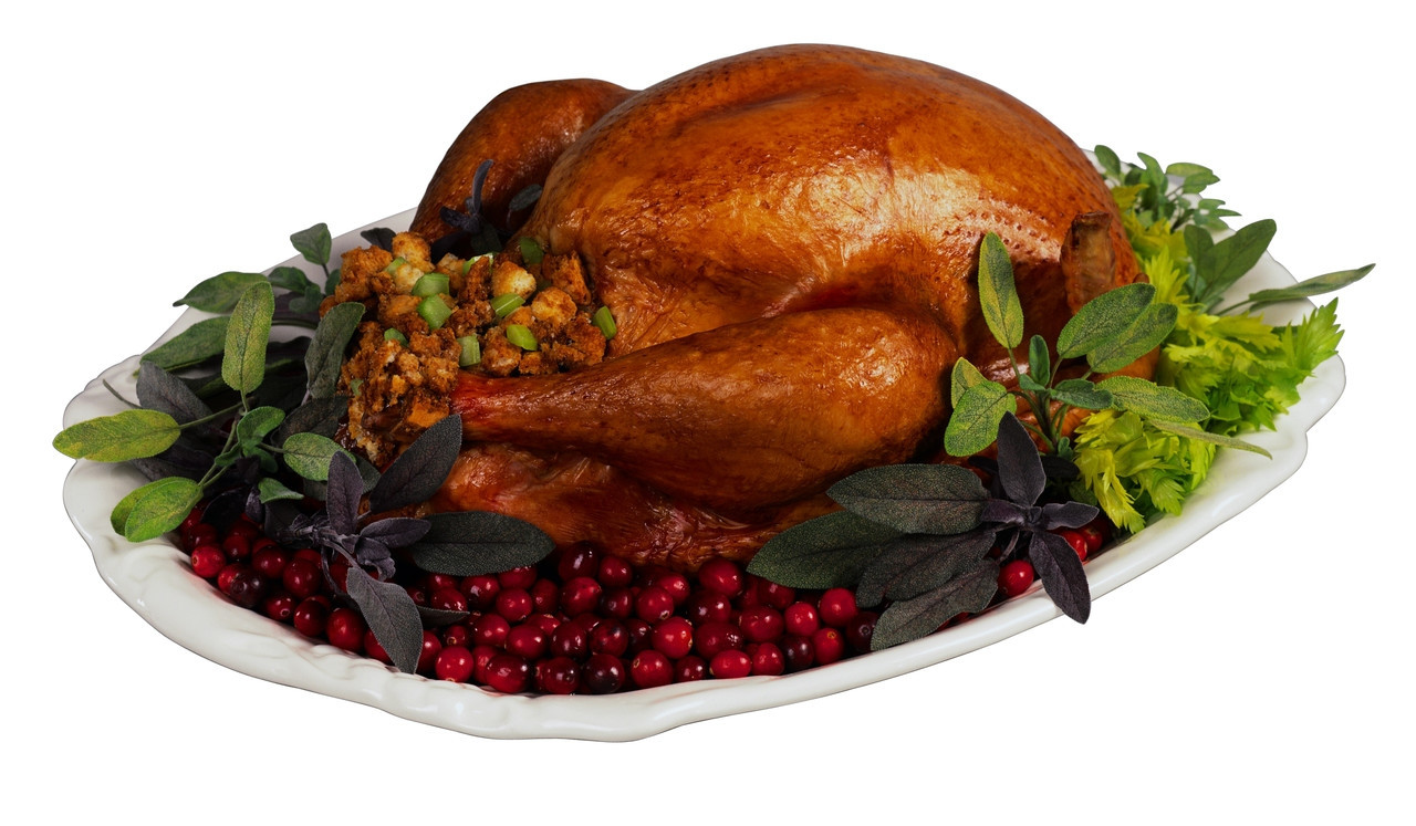 Pictures Of Turkey For Thanksgiving  Top 10 Favorite Thanksgiving Dishes ward State