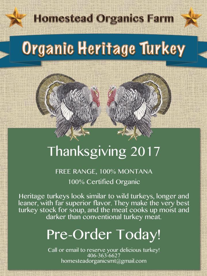 Pre Order Thanksgiving Turkey  Thanksgiving Turkey Pre order Today