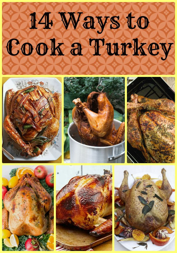 Prepare A Turkey For Thanksgiving  14 Different Ways to Cook a Turkey Made From Pinterest