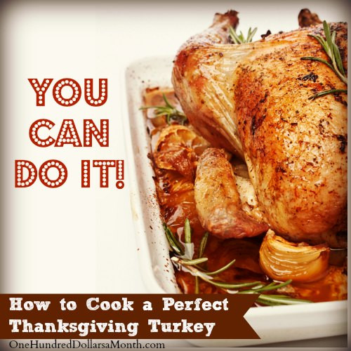 Prepare A Turkey For Thanksgiving  How to Cook a Perfect Thanksgiving Turkey e Hundred