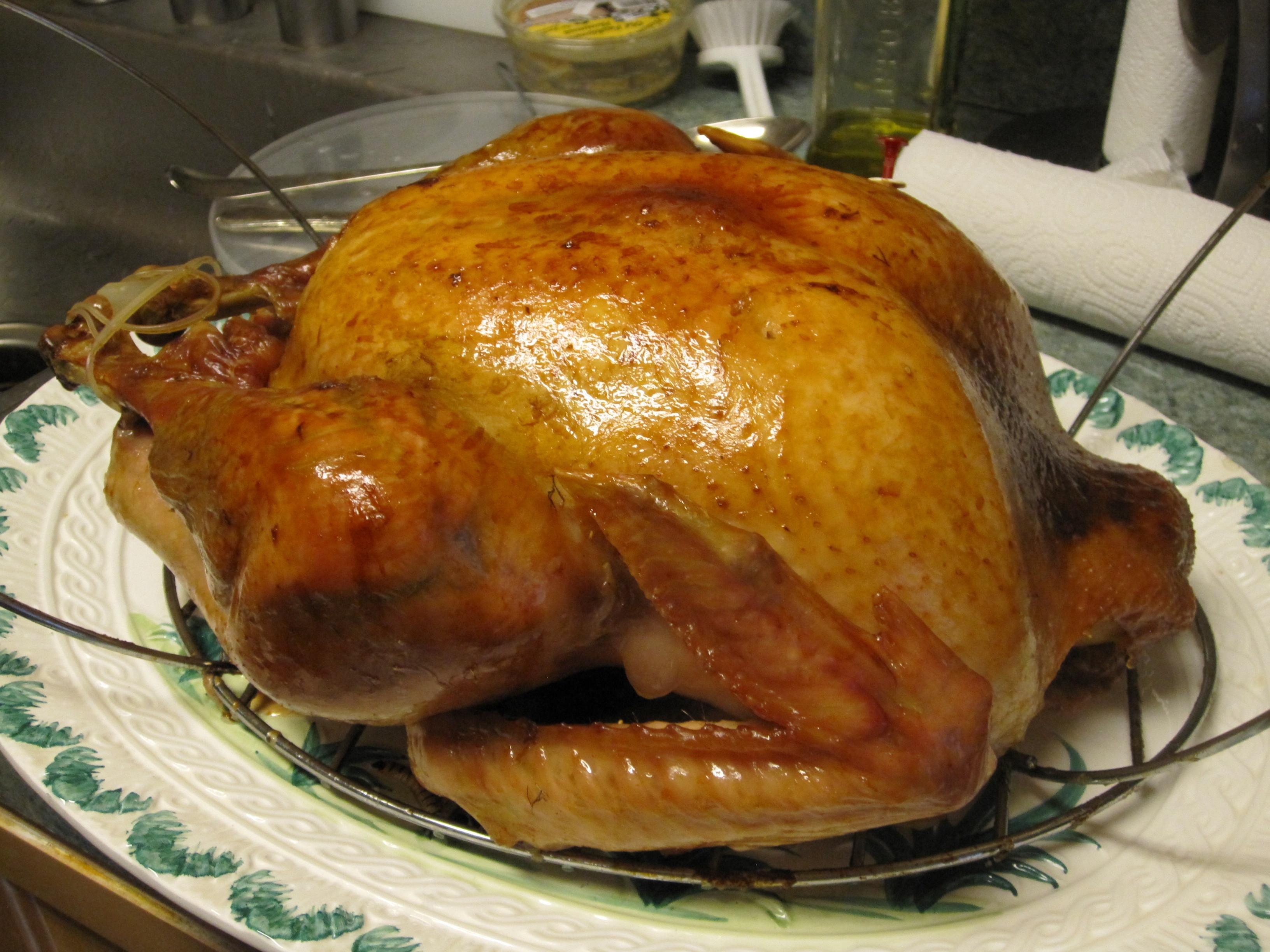 Prepared Turkey For Thanksgiving  Turkeytopia How I Produced a Thanksgiving Turkey Dinner