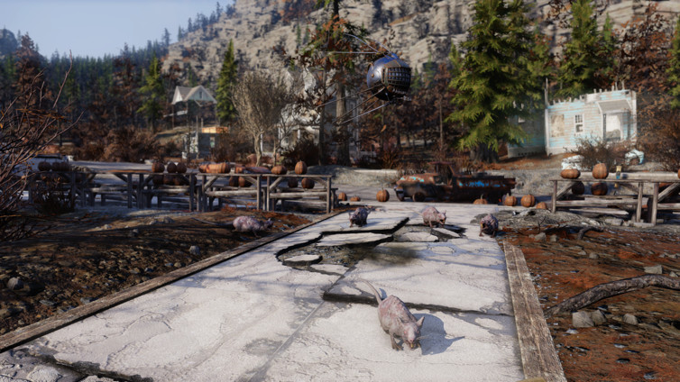Radioactive Pumpkin Seeds Fallout 76  I explored 6 6 of Fallout 76 s regions here s what I