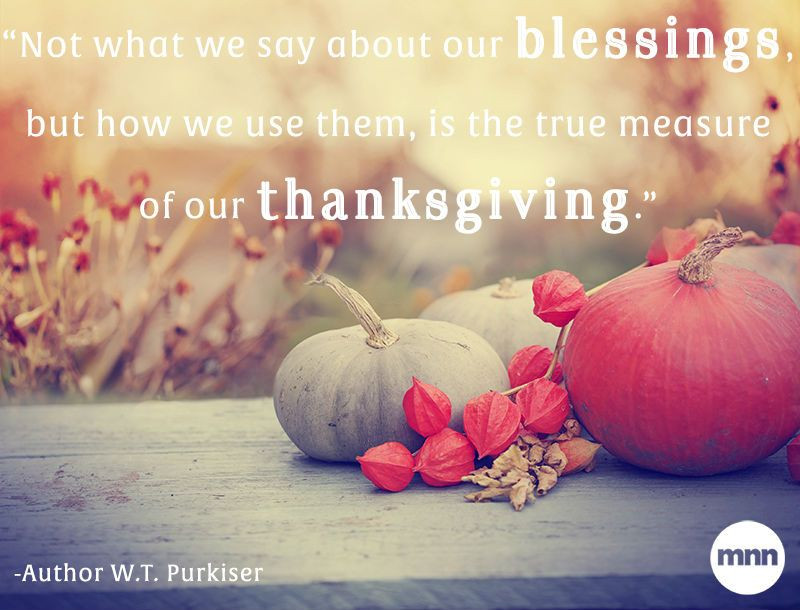 T Is For Turkey: A True Thanksgiving Story  12 inspiring quotes about gratitude