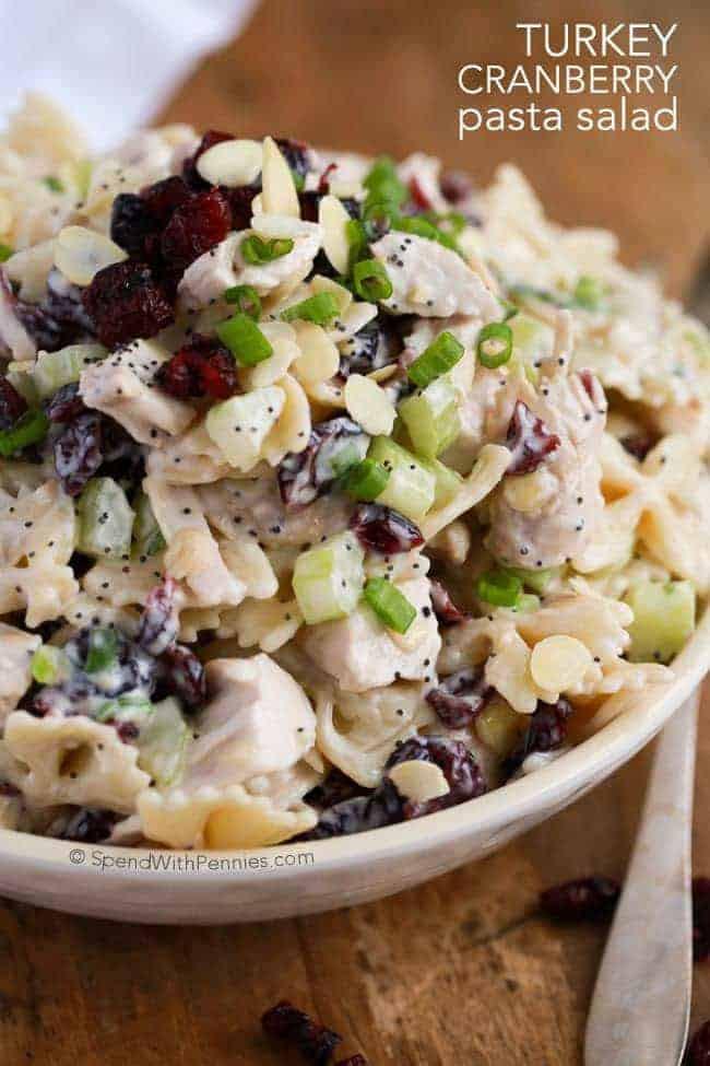Thanksgiving Pasta Salad  Turkey Cranberry Pasta Salad Spend With Pennies