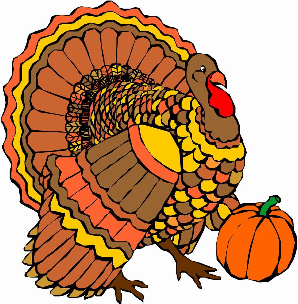 Thanksgiving Turkey Art  Thanksgiving Turkey ClipArt Best
