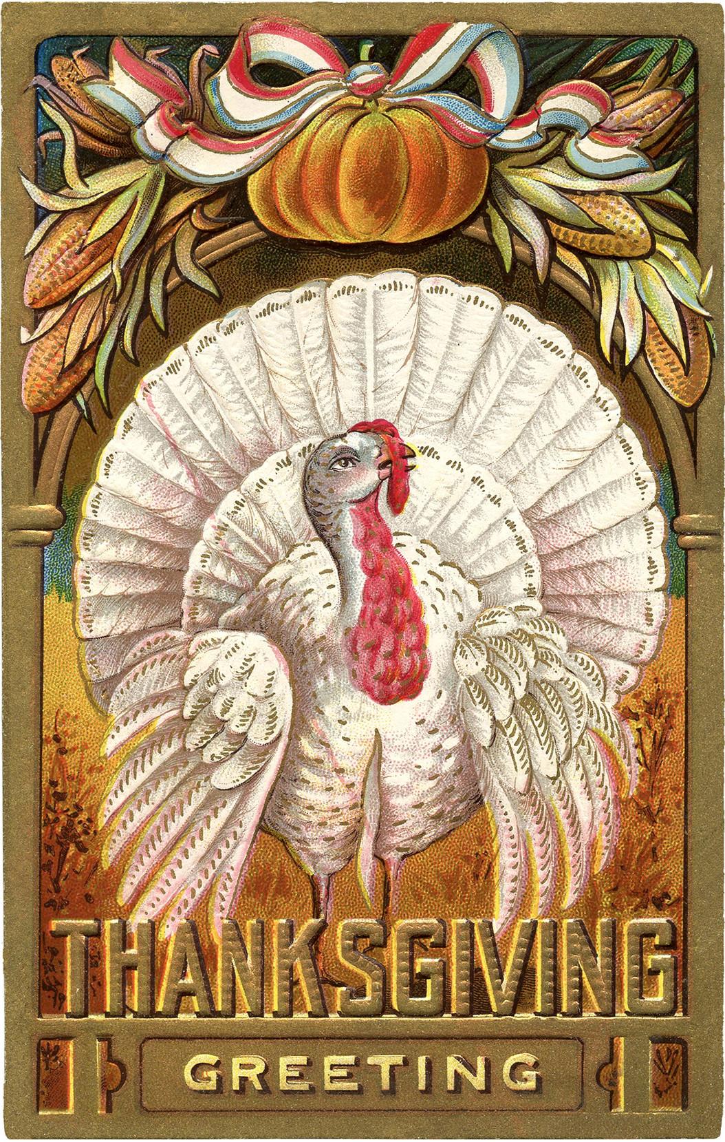 Thanksgiving Turkey Art  Thanksgiving Clip Art White Turkey The Graphics Fairy