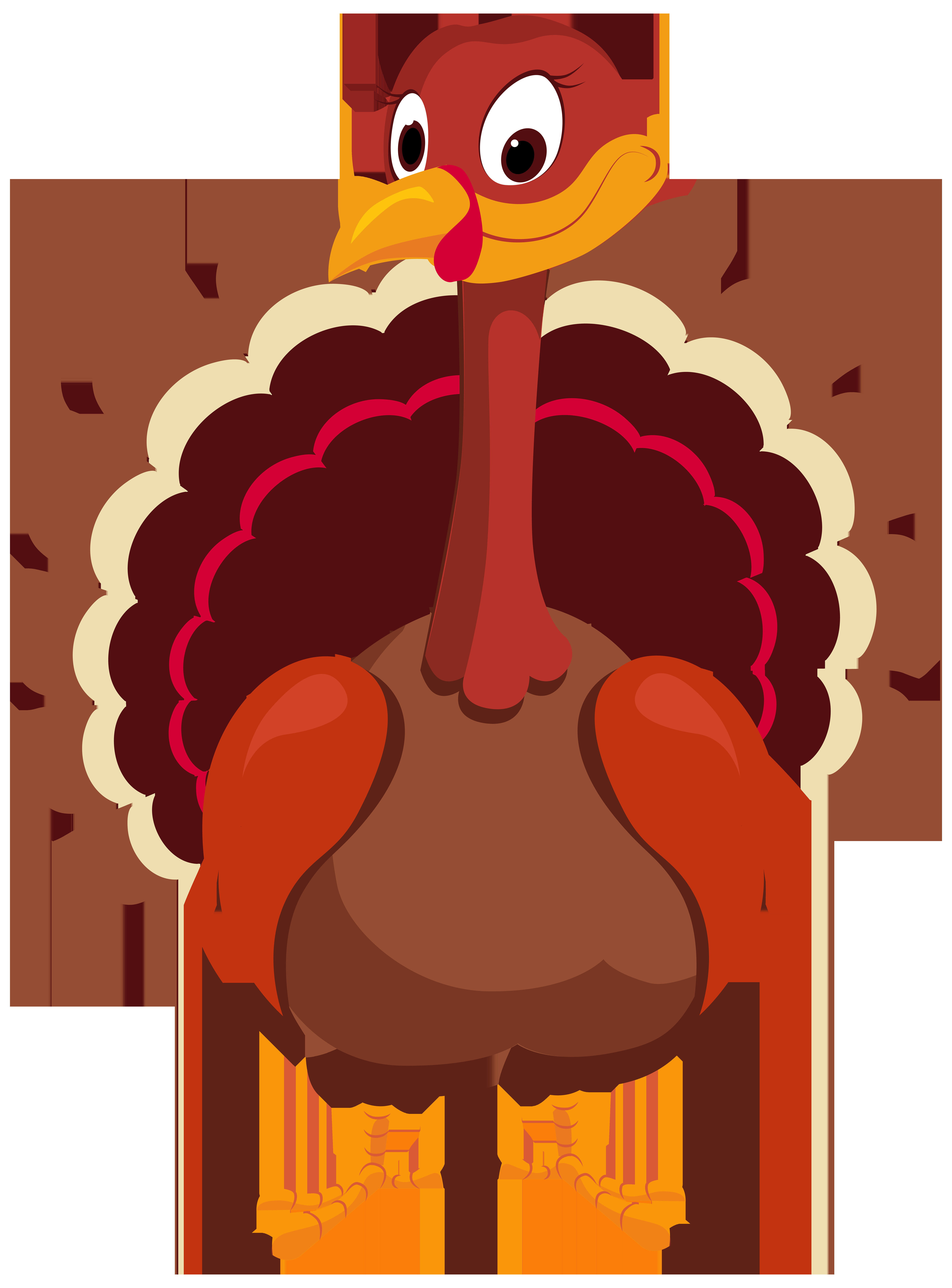 Thanksgiving Turkey Cartoon Images  Turkey clipart png transparent Pencil and in color