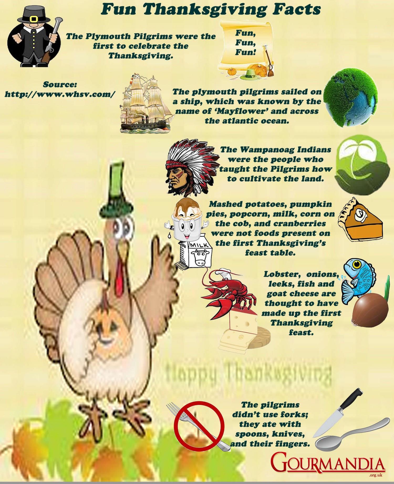 Thanksgiving Turkey Facts  Fun Thanksgiving Facts