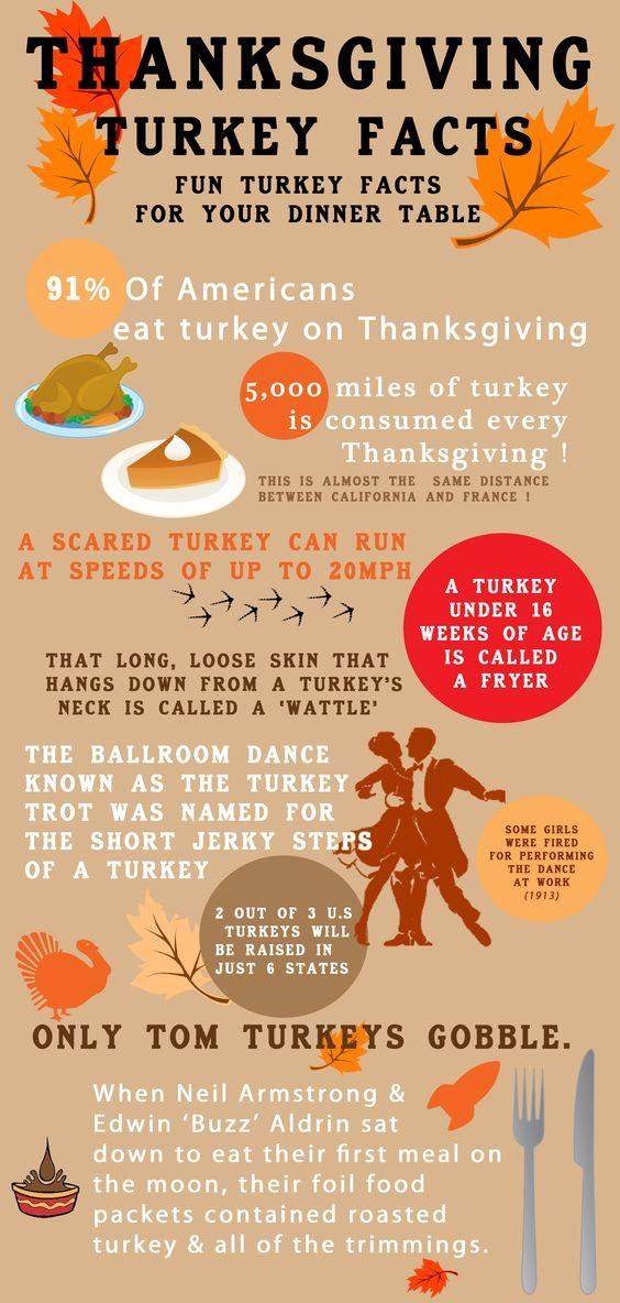 Thanksgiving Turkey Facts  Pinterest • The world's catalog of ideas