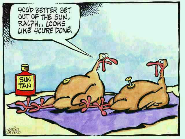 Thanksgiving Turkey Funny  Rick s Time Earth Some Thanksgiving Humor