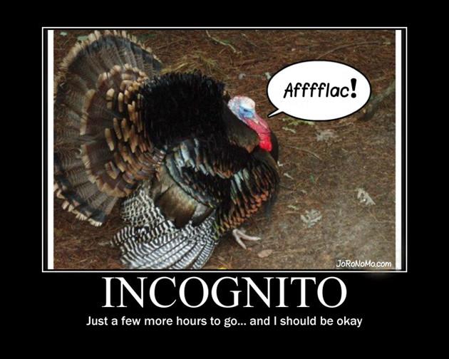 Thanksgiving Turkey Funny  Funny Turkey Pics on Pinterest