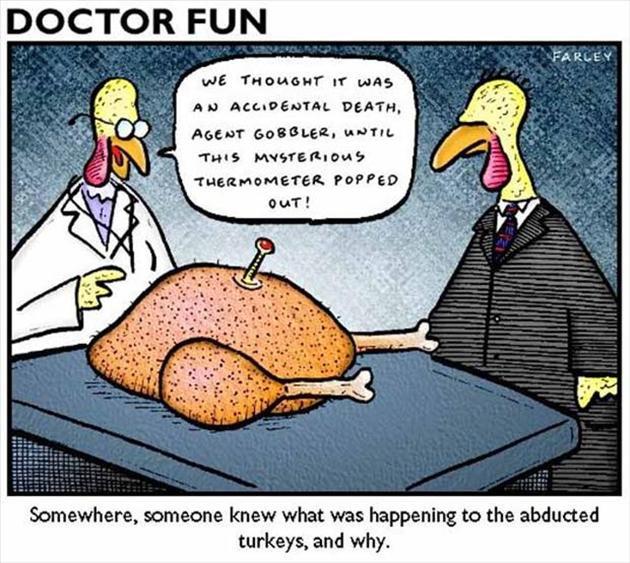 Thanksgiving Turkey Funny  Funny Thanksgiving pilation 20 Pics