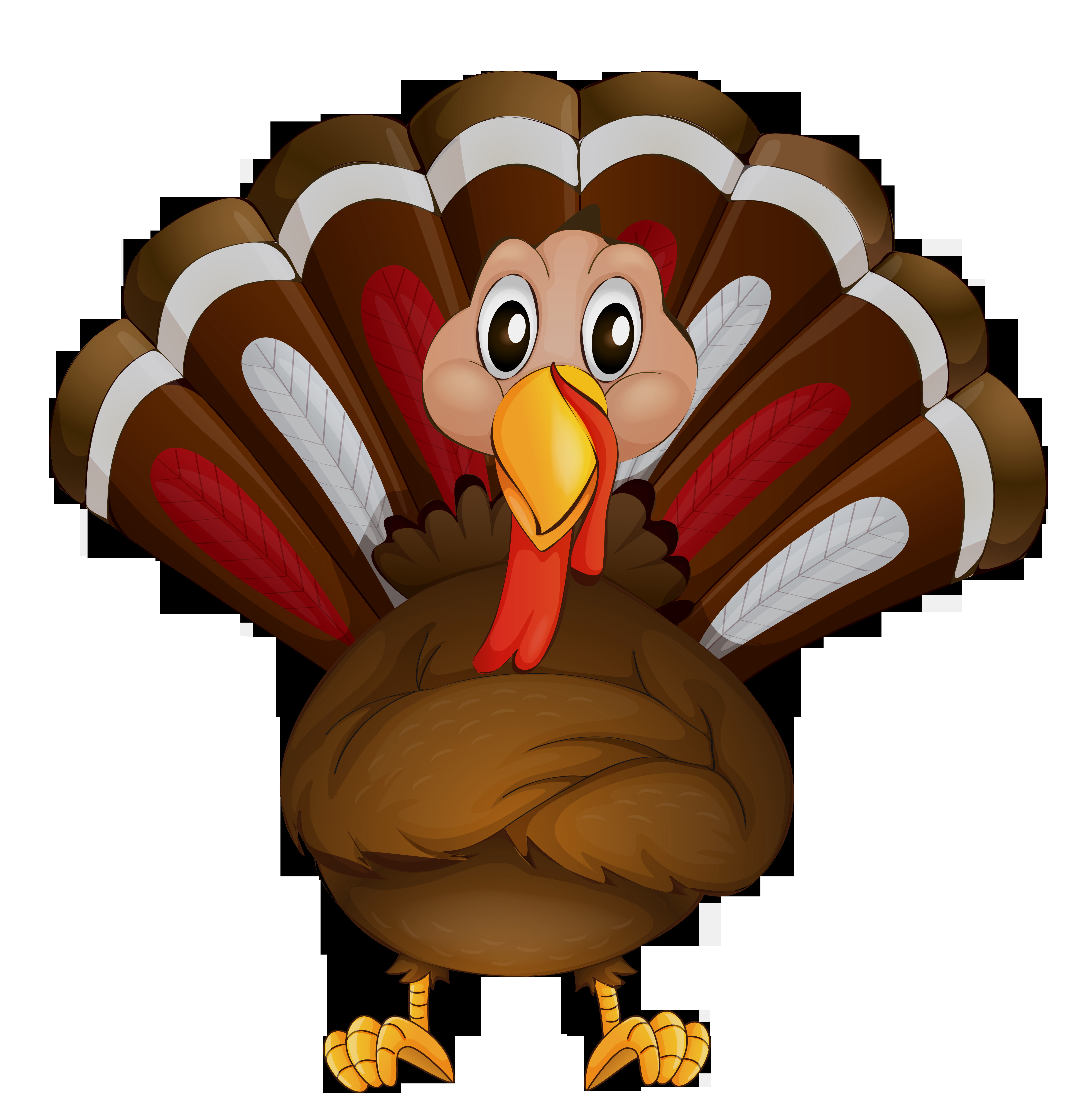 Thanksgiving Turkey Graphic  Thanksgiving clipart transparent Pencil and in color