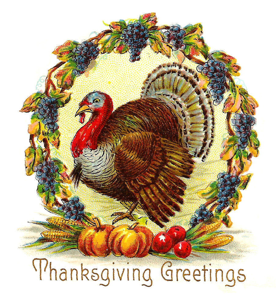 Thanksgiving Turkey Graphic  Antique Free Thanksgiving Day Graphic