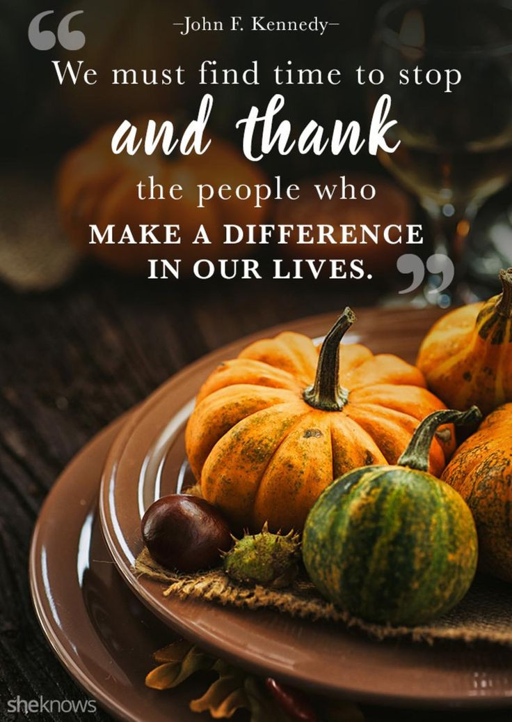 Thanksgiving Turkey Quotes  17 Best images about THANKFUL on Pinterest