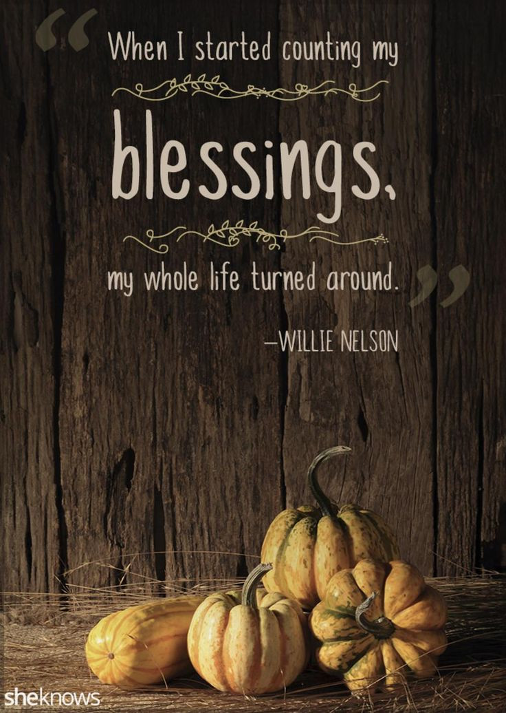 Thanksgiving Turkey Quotes  1000 Thanksgiving Quotes on Pinterest