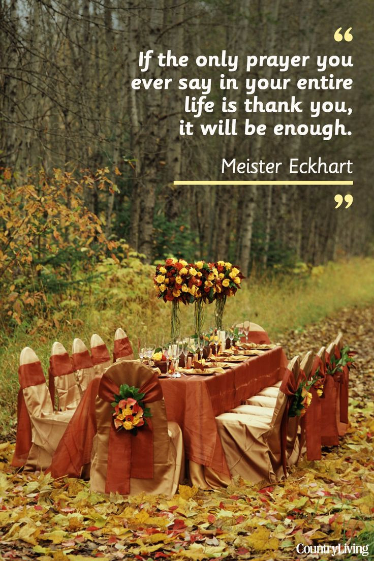 Thanksgiving Turkey Quotes  25 best Thanksgiving quotes family on Pinterest