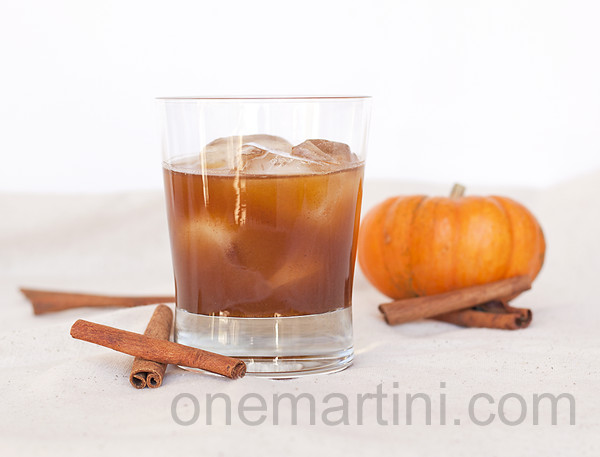 Thanksgiving Vodka Drinks  10 Cocktails To Get You Through Thanksgiving