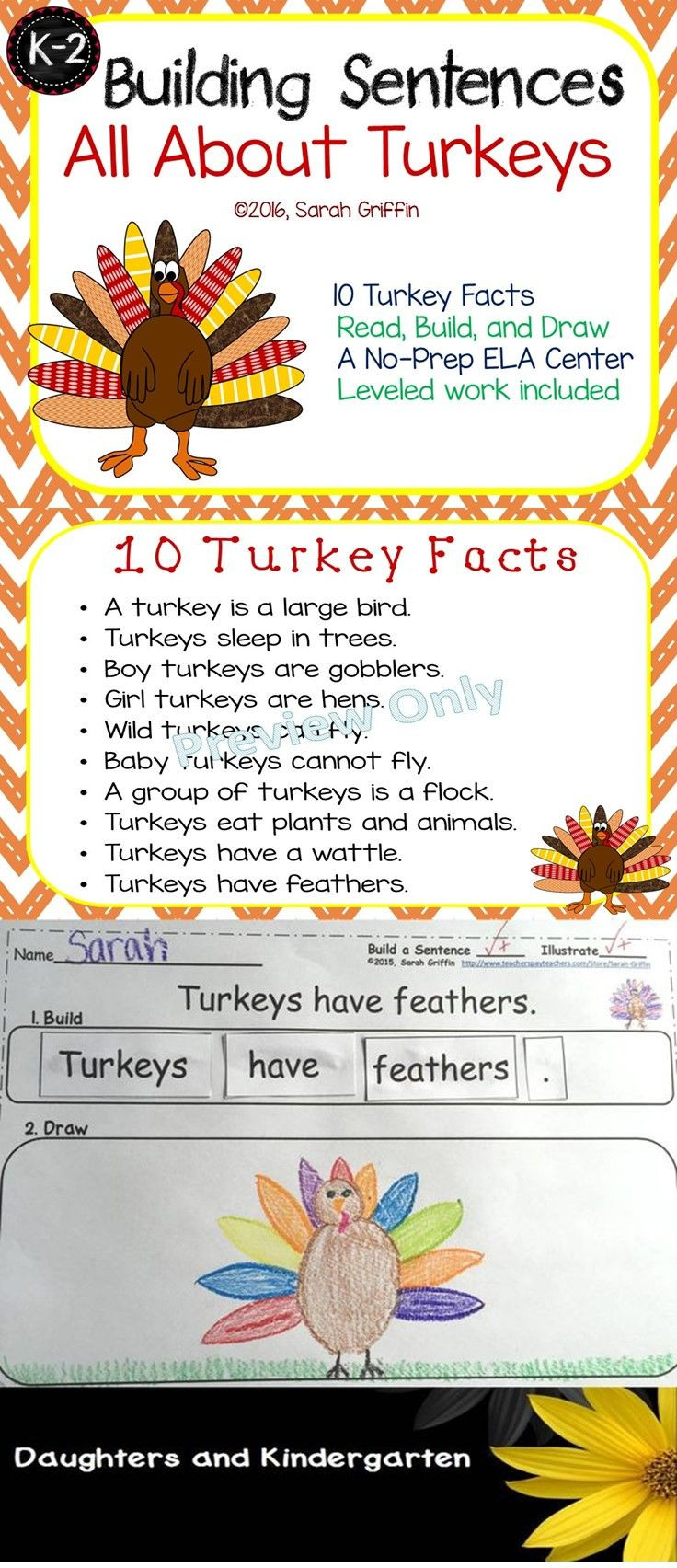 Turkey And Thanksgiving Facts  Building Sentences Turkey Facts