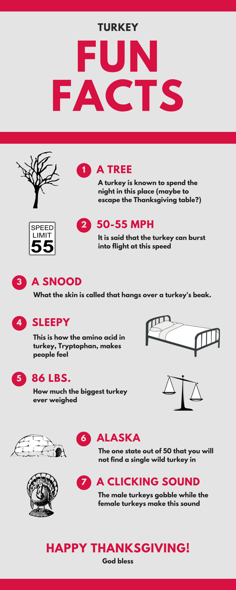 Turkey And Thanksgiving Facts  7 Fun Facts About the Turkey infographic