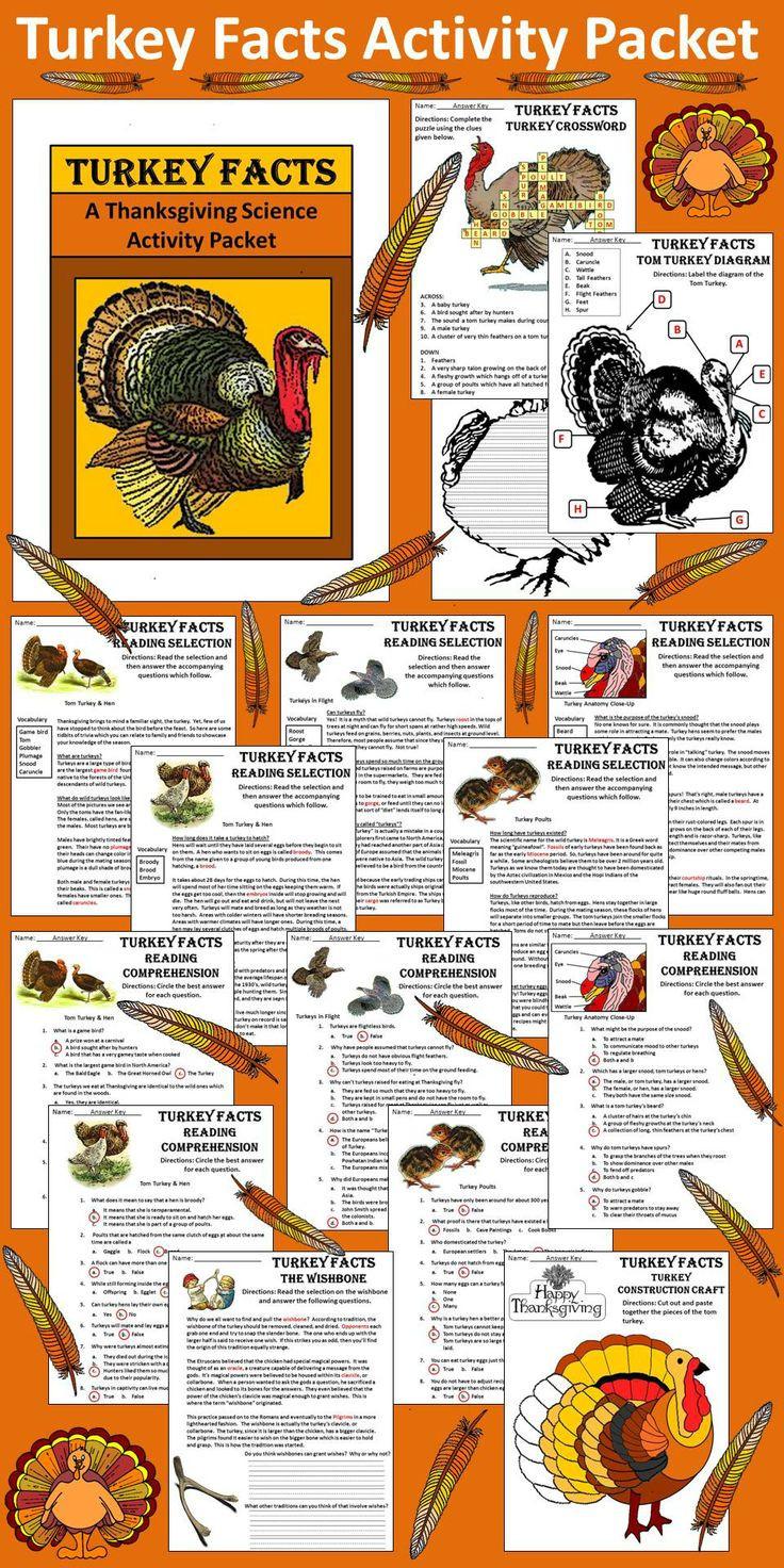 Turkey And Thanksgiving Facts  Turkey Activities Turkey Facts Thanksgiving Science