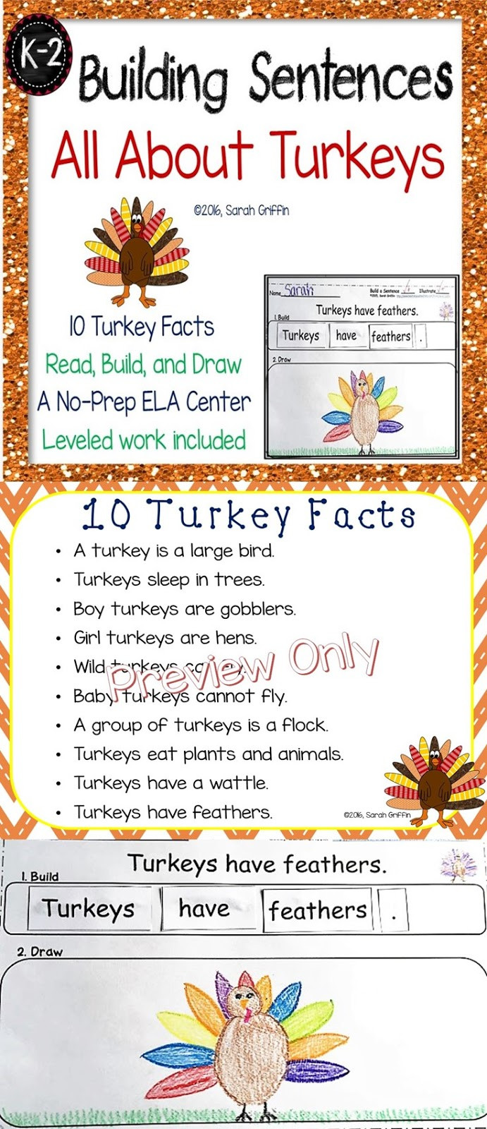Turkey And Thanksgiving Facts  Daughters and Kindergarten Ten Turkey Facts for Kids