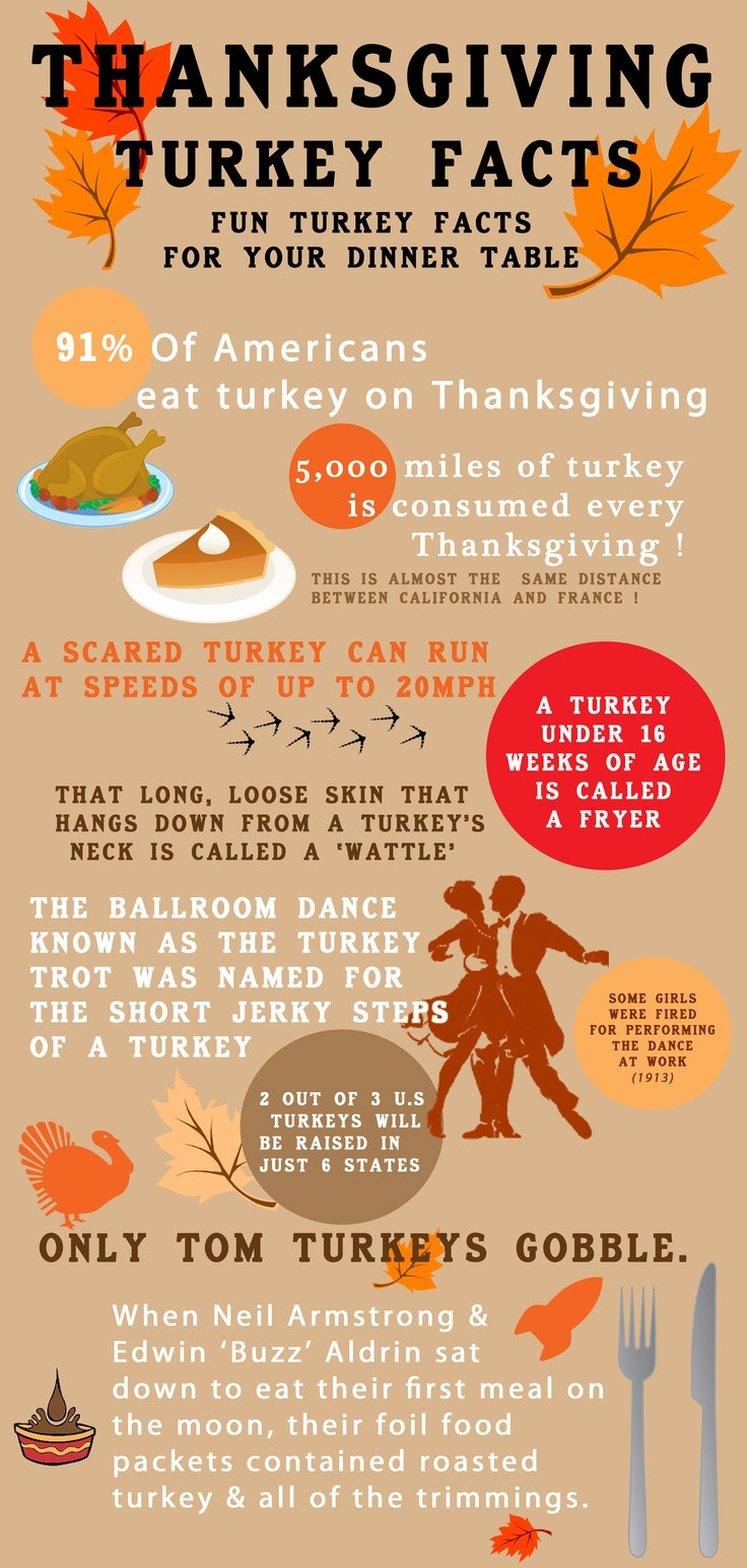 Turkey And Thanksgiving Facts  45 best images about Newsletter Templates on Pinterest
