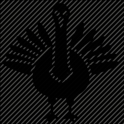 Turkey Icon For Thanksgiving  Bird turkey icon