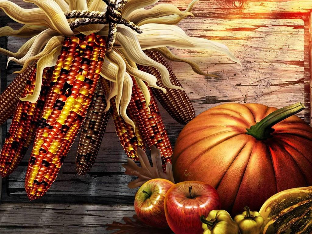 Turkey Images Thanksgiving  Thanksgiving Holiday Wallpaper 3581