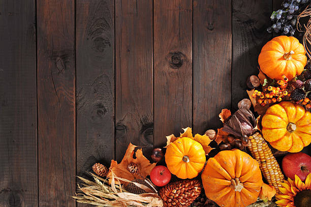 Turkey Images Thanksgiving  Thanksgiving and Stock s iStock