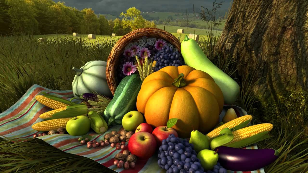 Turkey Images Thanksgiving  Thanksgiving Day 3D Screensaver