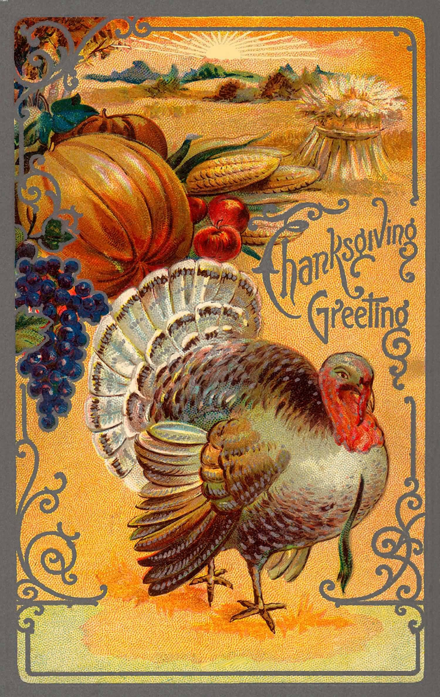 Turkey Pictures For Thanksgiving  70 Best Happy Thanksgiving Day Wish