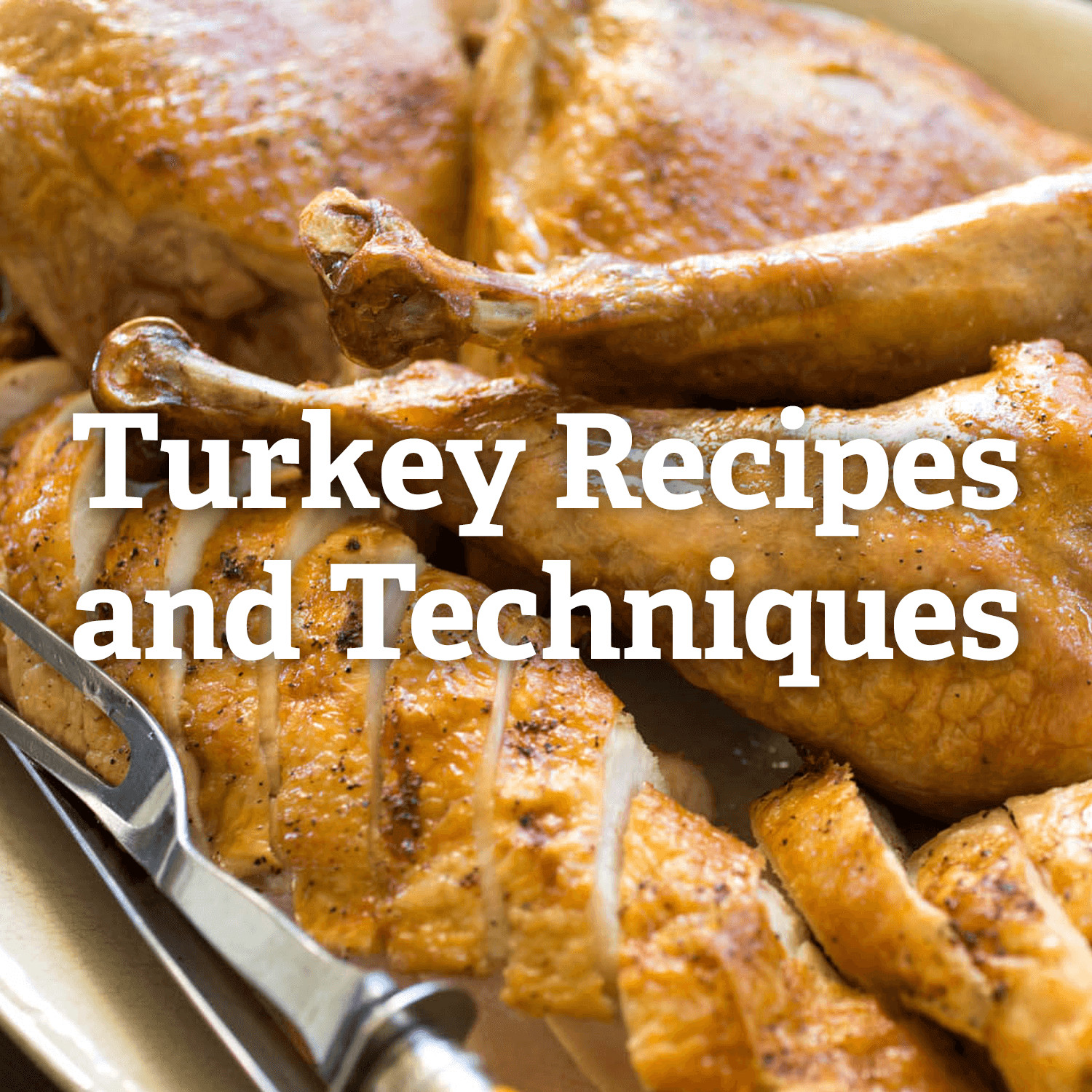 Turkey Recipes Thanksgiving  Thanksgiving Turkey Recipes and Techniques