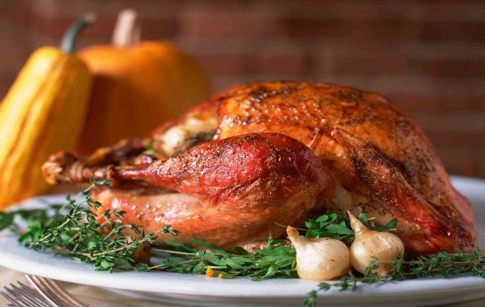 Turkey Shortage For Thanksgiving  Should You Be Worried About a Thanksgiving Turkey Shortage