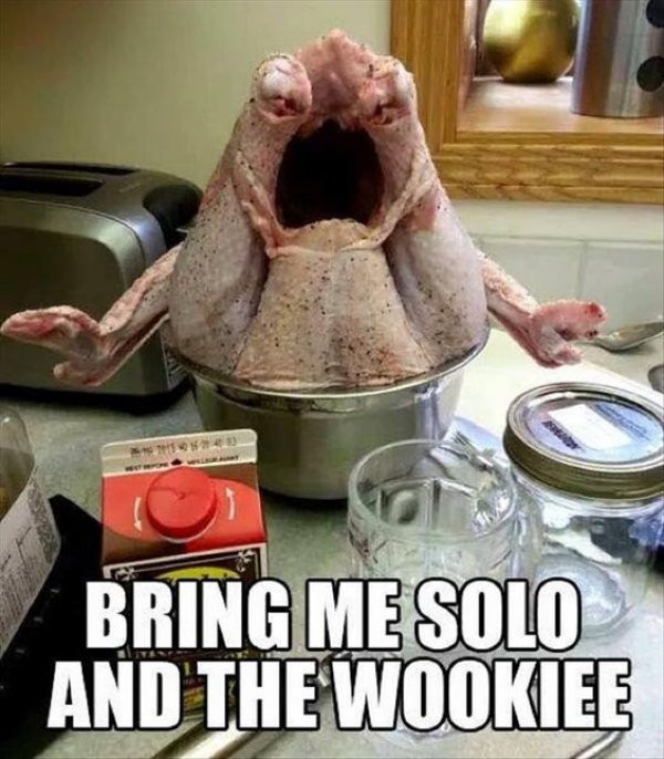Turkey Thanksgiving Meme  Thanksgiving Memes and fun pictures theCHIVE