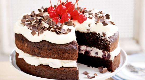 Types Of Christmas Cakes  TYPES OF CHRISTMAS CAKES Best Cakes Recipes UK