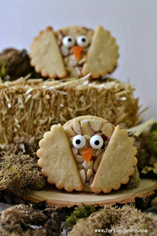 Vegan Halloween Cookies  Gluten Free Vegan Recipes halloween