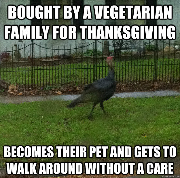Vegan Thanksgiving Meme  Bought By A Ve arian Family For Thanksgiving Funny Meme