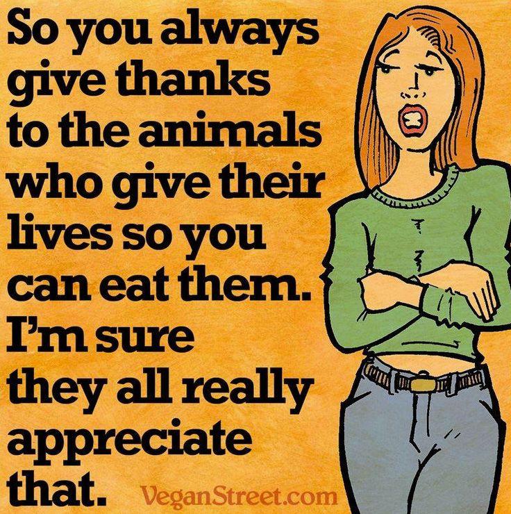 Vegan Thanksgiving Meme  198 best images about Vegan memes on Pinterest