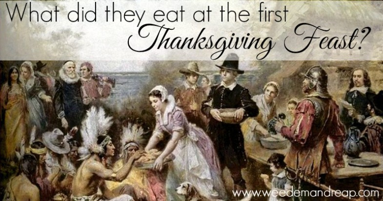 Was There Turkey At The First Thanksgiving  What did they eat at the first Thanksgiving Feast