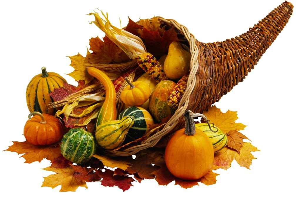Was Turkey Served At The First Thanksgiving  What Was Served at the First Thanksgiving Meal AOL