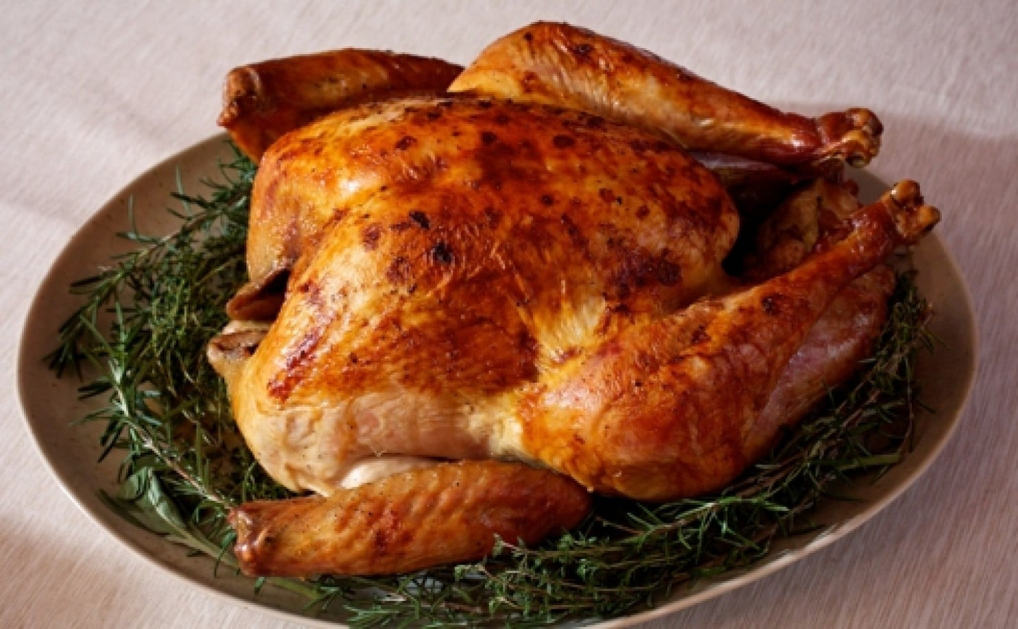 When To Buy Turkey For Thanksgiving  Thanksgiving FAQs When to and how to store your